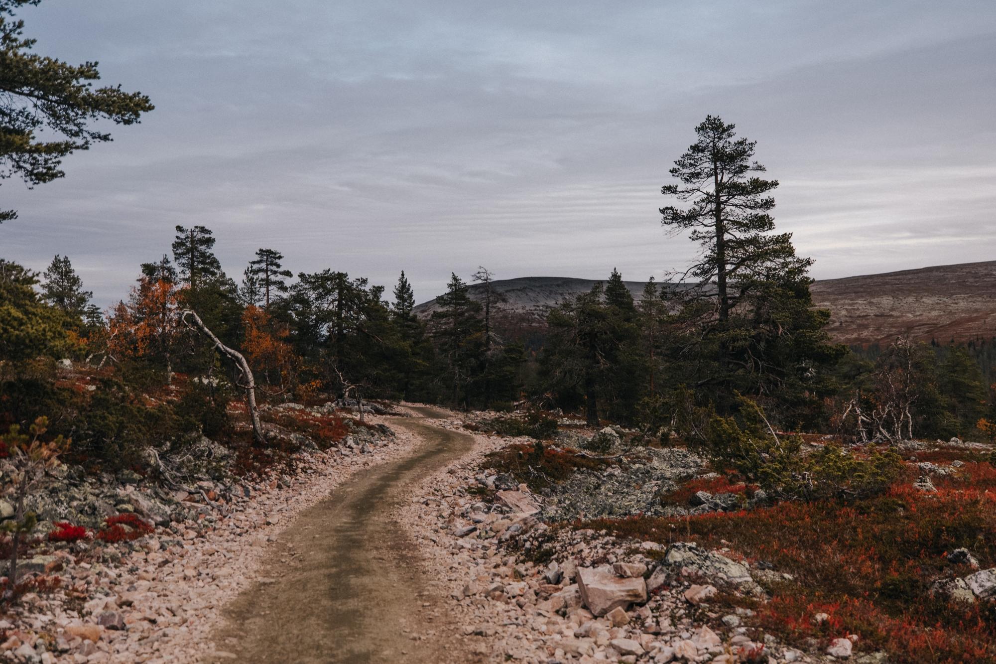 naaG_Ylläs4